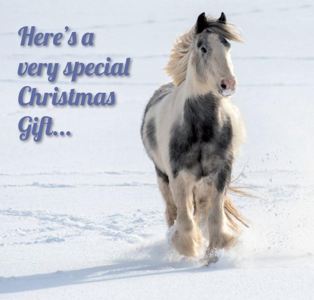 Christmas treatment