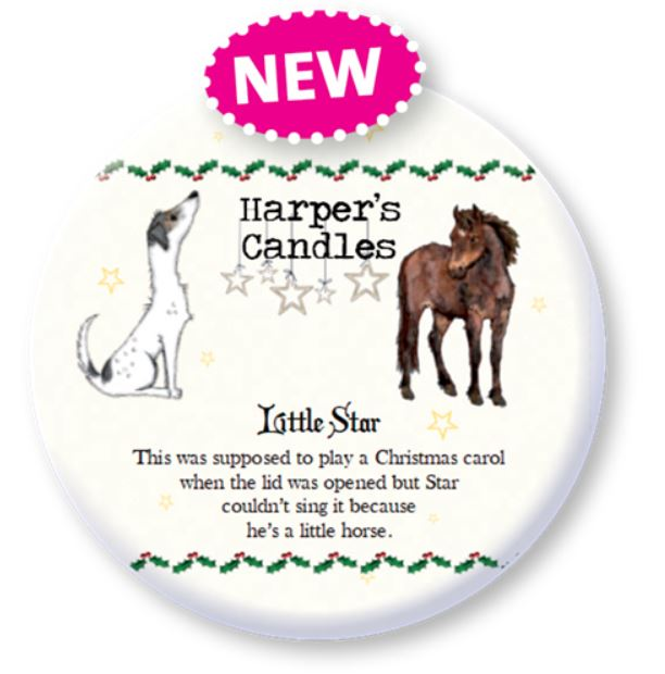 LITTLE STAR (LARGE CANDLE)