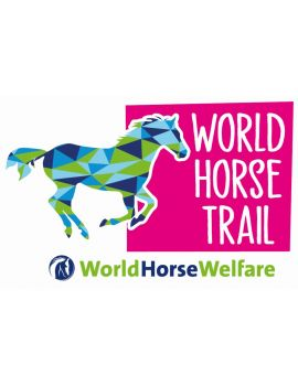 DONATE TO WORLD HORSE TRAIL