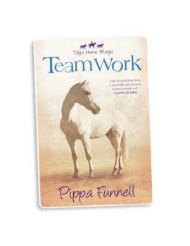 Team 3: work