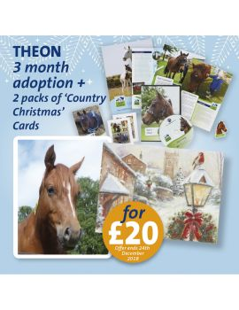 THEON ADOPT A HORSE CHRISTMAS
