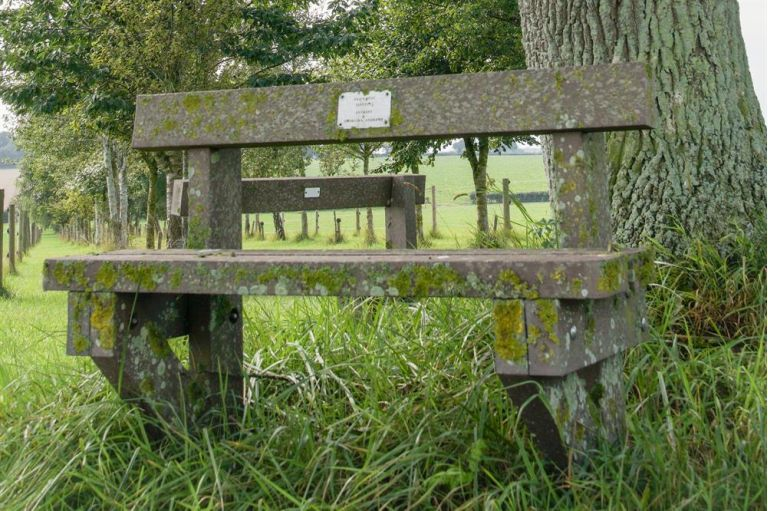 Bench at Belwade Farm