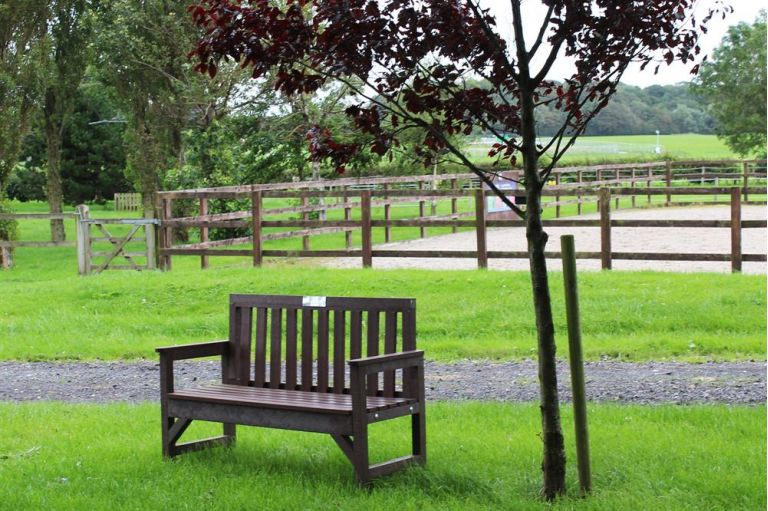 Bench at Penny Farm