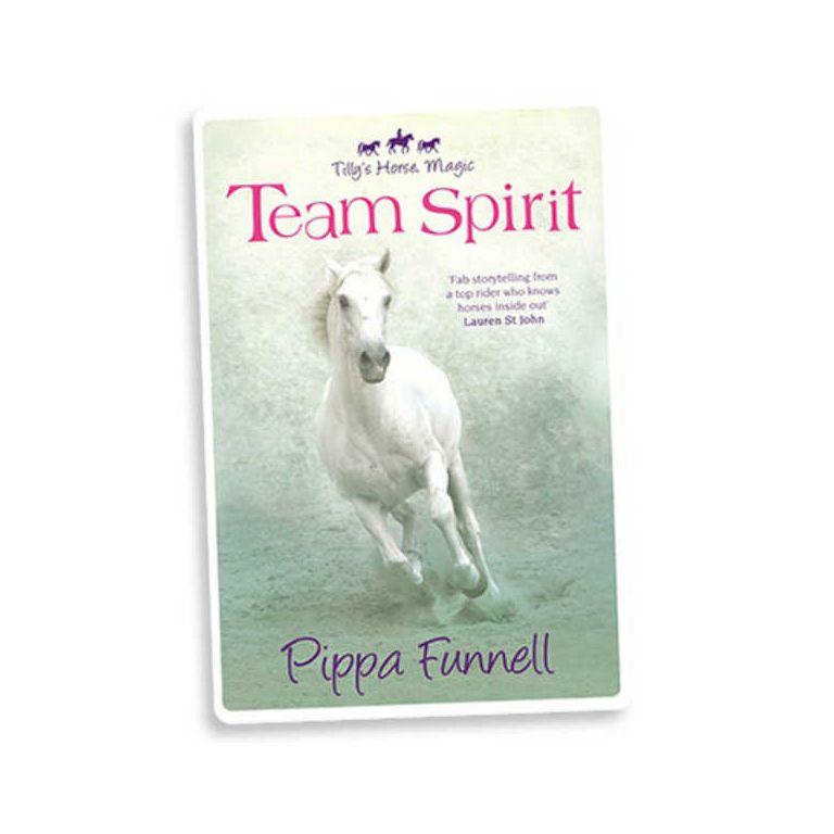 Team 1: spirit